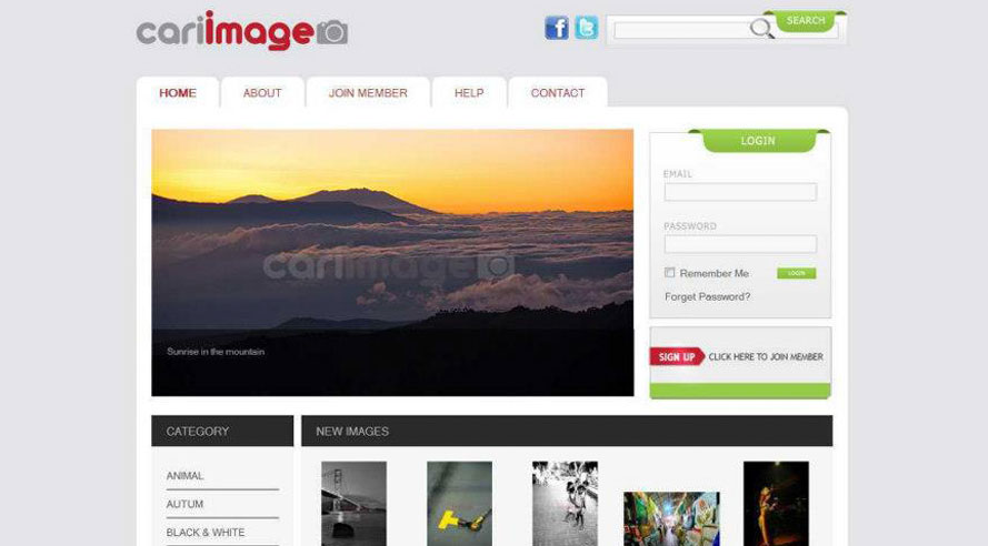 Website Cariimage